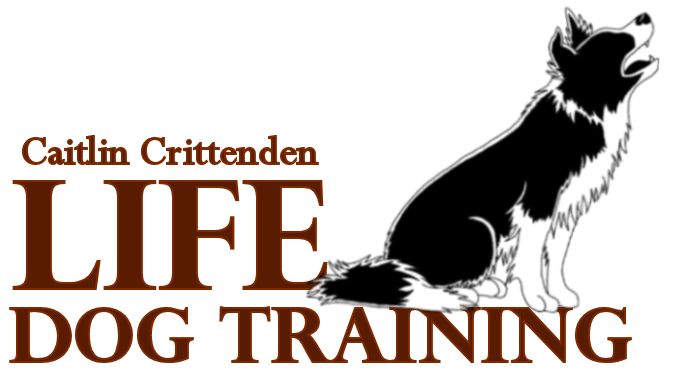 Life Dog Training